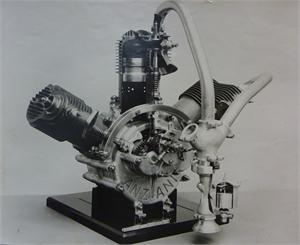 Anzani 25 Hp radial engine